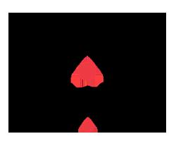 Karakal squash logo